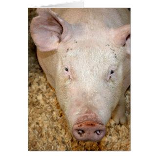Cerdo rosado con la imagen linda del piggie de la tarjeta de felicitación