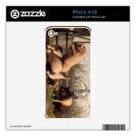 Cerdos borrachos calcomanías para el iPhone 4S