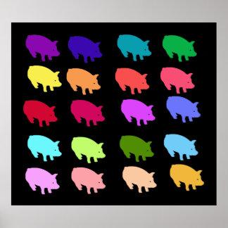 Cerdos del arco iris póster