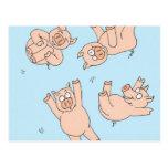 Cerdos del trampolín tarjetas postales