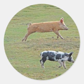 Cerdos del vuelo pegatina redonda