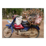 Cerdos en moto-Camboya Felicitacion