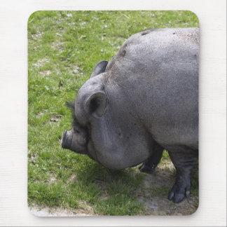 Cerdos guarros dulces del | alfombrillas de raton
