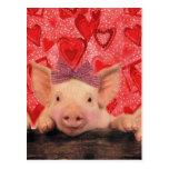 Cerdos lindos de la tarjeta del día de San Valentí Postal