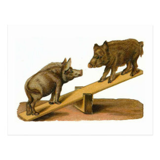 Cerdos principales del extremo tarjetas postales