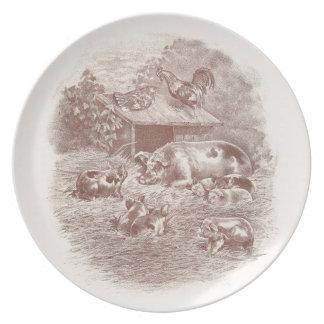 Cerdos y pollos en corral platos
