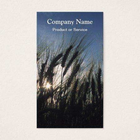 Cereal Crop Business Cards