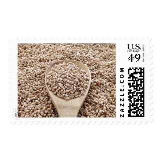 Cereal Grain Stamp