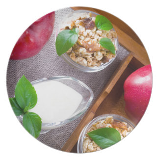 Cereal with walnuts and raisins, yogurt and apples dinner plate