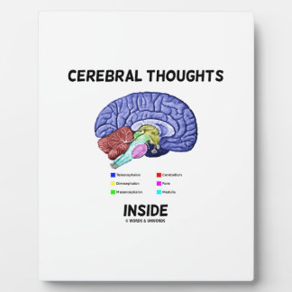 Cerebral Thoughts Inside Brainy Anatomical Humor Plaque