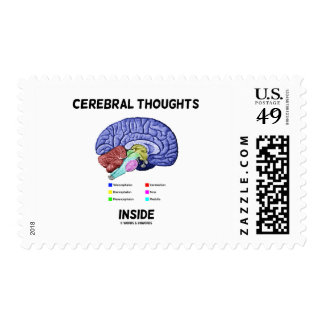 Cerebral Thoughts Inside Brainy Anatomical Humor Postage