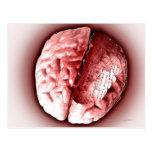 Cerebro de la placa de circuito tarjeta postal