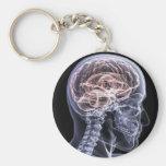 Cerebro de la radiografía llavero redondo tipo pin