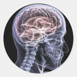 Cerebro de la radiografía pegatina redonda