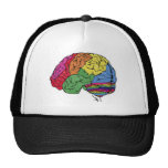 Cerebro del arco iris gorras