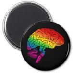 Cerebro del arco iris imanes para frigoríficos