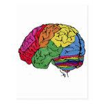 Cerebro del arco iris tarjetas postales