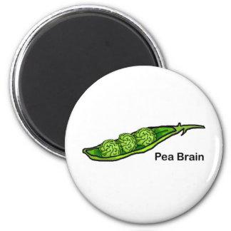 Cerebro del guisante imán redondo 5 cm