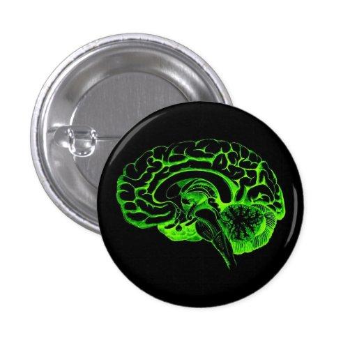 Cerebro del zombi pin redondo 2,5 cm
