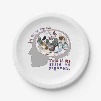 Cerebro en palomas plato de papel de 7 pulgadas