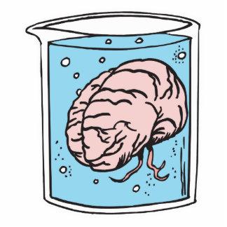 cerebro en un tarro fotoescultura vertical