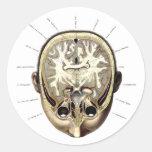 Cerebro expuesto anatomía retra del monstruo del pegatina redonda