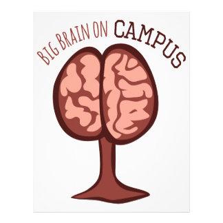 Cerebro grande en campus membrete a diseño