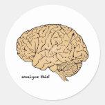 Cerebro humano: ¡Analice esto! Pegatinas Redondas