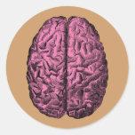 Cerebro humano de la anatomía pegatina