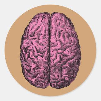 Cerebro humano de la anatomía pegatina redonda