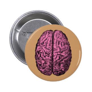 Cerebro humano de la anatomía pin redondo de 2 pulgadas
