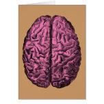 Cerebro humano de la anatomía tarjetón