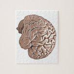 cerebro humano puzzle con fotos
