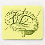 Cerebro humano tapete de ratones