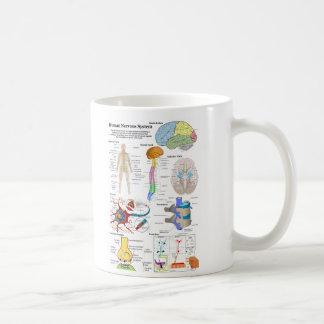 Cerebro humano y diagrama de sistema nervioso taza de café