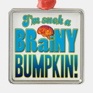 Cerebro inteligente del Bumpkin Adorno Cuadrado Plateado