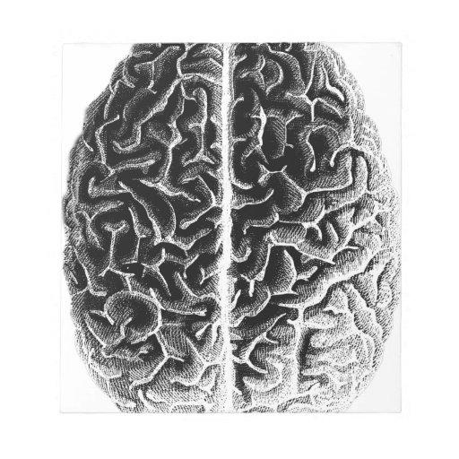 Cerebro Libreta Para Notas