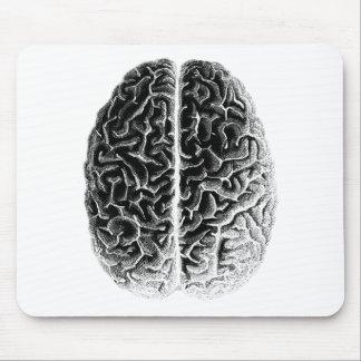Cerebro Tapete De Raton