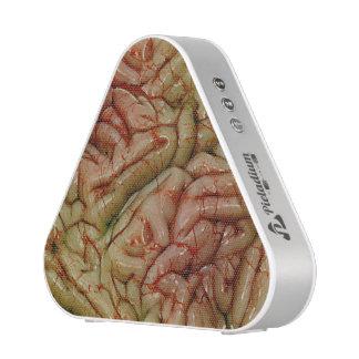 Cerebros BrainZZ BRAINZZZ Altavoz