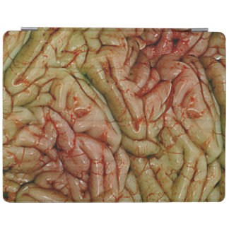 Cerebros BrainZZ BRAINZZZ Cover De iPad