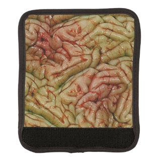 Cerebros BrainZZ BRAINZZZ Cobertura Para Asa De Maleta