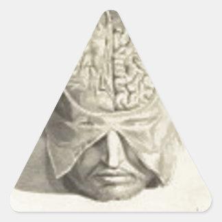 Cerebros Calcomanías Trianguloes
