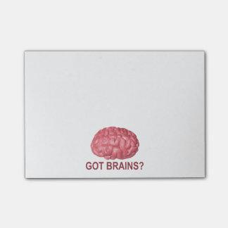 ¿Cerebros conseguidos