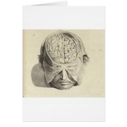 Cerebros Felicitaciones