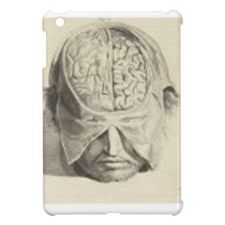Cerebros iPad Mini Cobertura