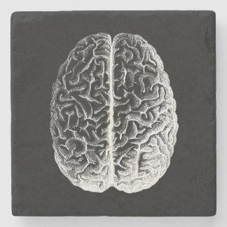 ¡Cerebros! Posavasos De Piedra