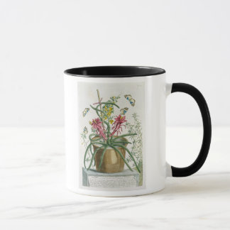 Cereus Minimus, c.1745 (coloured litho) Mug