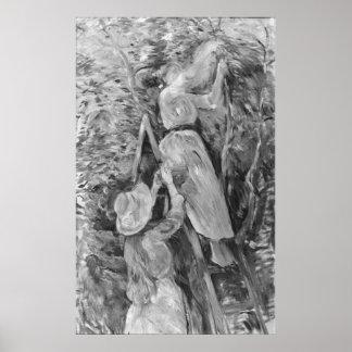 Cerezas de la cosecha, 1891 póster