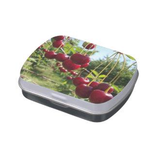 Cerezas del verano latas de caramelos