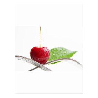 Cerezas frescas rojas gourmet hechizo postal